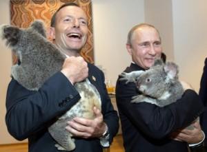 Australiens Premierminister Tony Abbott und Russlands Präsident Wladimir Putin nehmen u.a. beim G20-Gipfel in Brisbane/ Australien Koalabären auf dem Arm / © AFP/ Andrew Taylor)