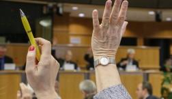 Ausschusssitzung © European Union 2013 - EP